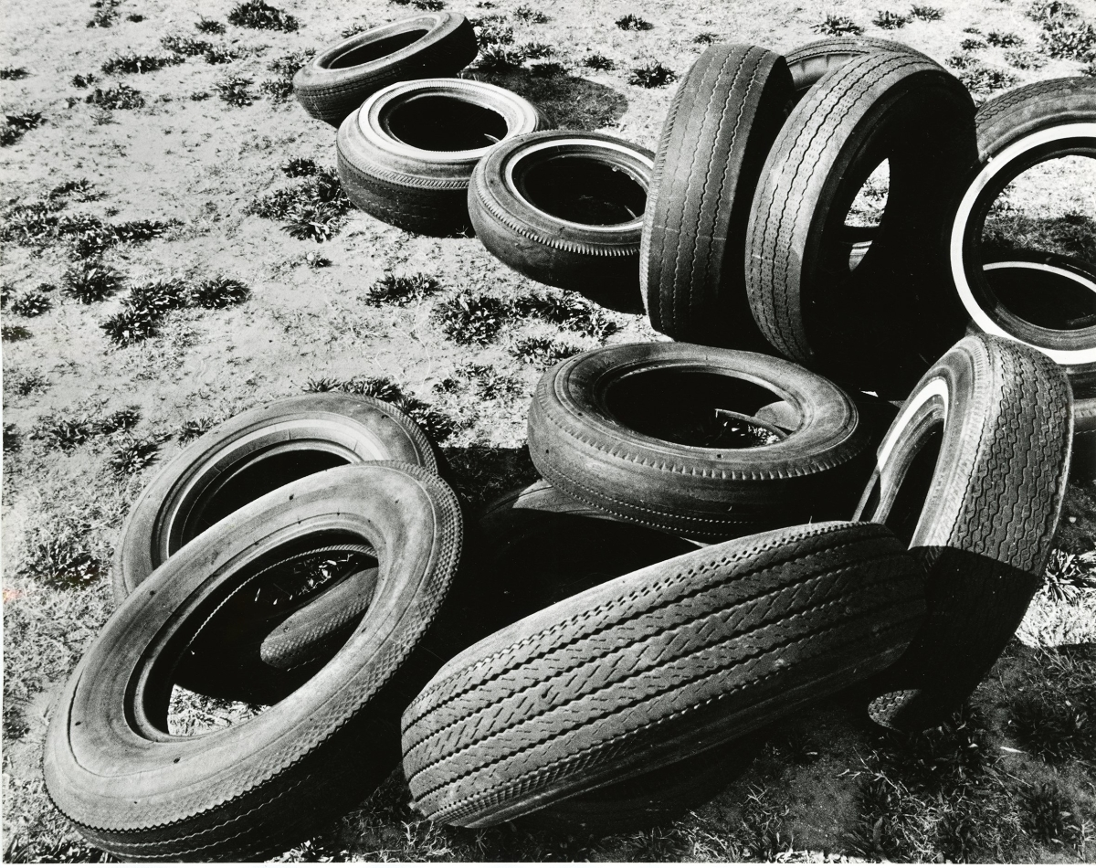 René Bauermeister. California Dreaming
