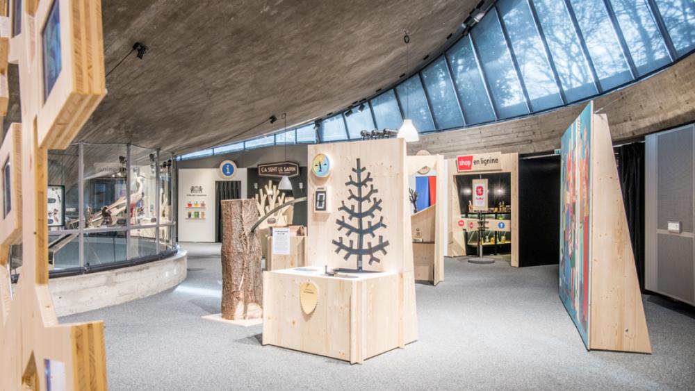 "Exposition ""L'arbre"" Sarah Jaquemet"