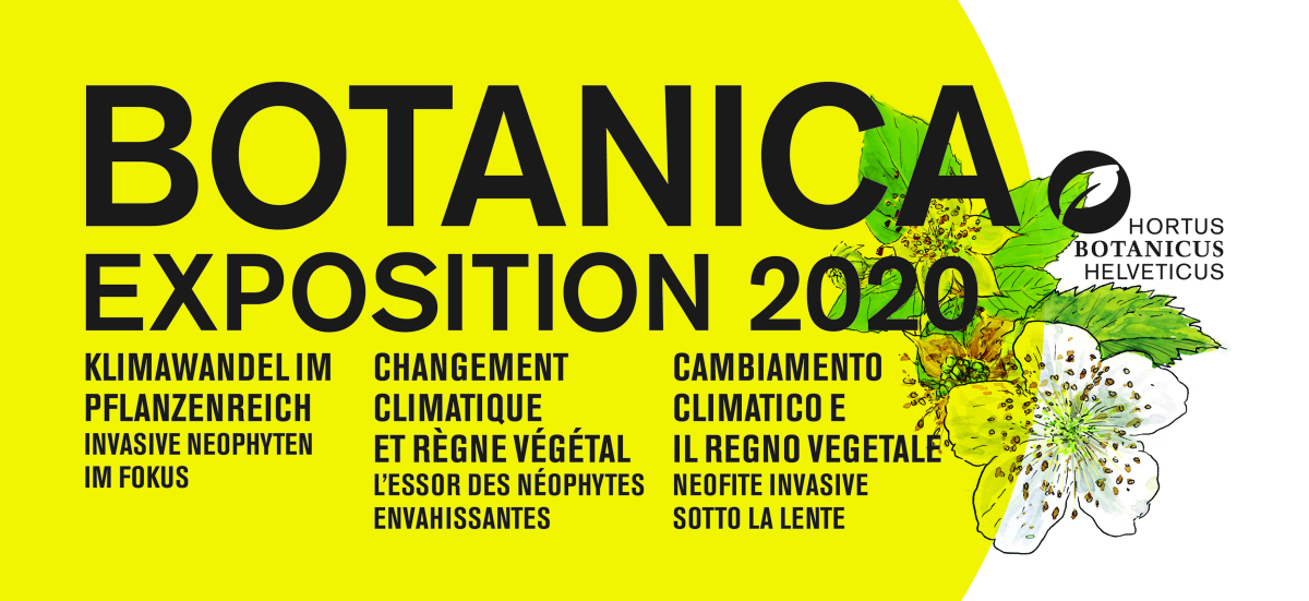 Botanica 2020