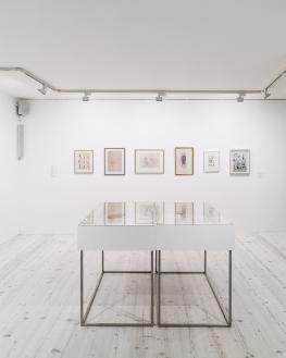 Zao Wou-Ki collectionneur Vue d'exposition M. Barraz
