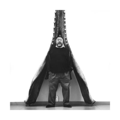 Ai Weiwei devant le grand cachalot (mâchoire inférieure) au Musée cantonal de zoologie de Lausanne, 2016 Alfred Weidinger