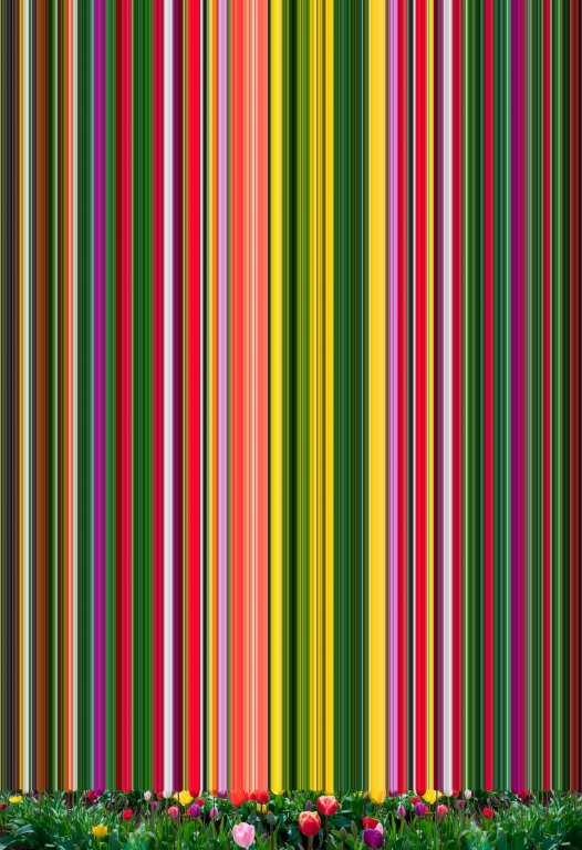 © Erik Berglin, Tulip Variation #94, 2020 © Erik Berglin, Tulip Variation #94, 2020