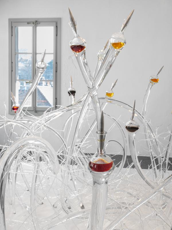 Jardin d'addiction mudac Julien Gremaud
