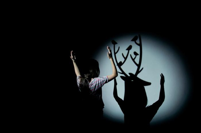 Camille Scherrer, « In the Woods », 2011 En passant devant un halo de lumière, notre ombre se voit pousser des bois de cerf, une tête d'ours ou une autre « bestiole » issue de l'imaginaire bucolique de l'artiste. © Camille Scherrer