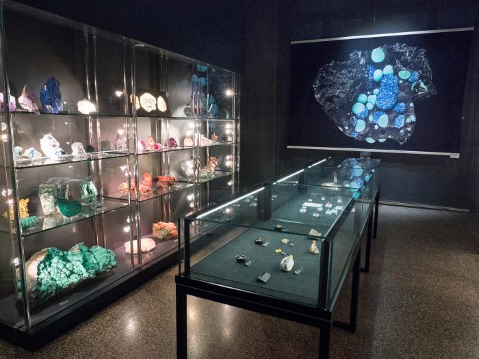 Salle Eugène Renevier Michel Krafft Musée cantonal de géologie